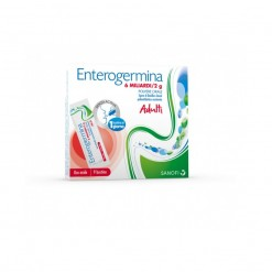 ENTEROGERMINA*orale sosp 9 bust 6 mld/2 g
