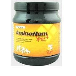 AMINONAM SPORT POLVERE BARATTOLO 500 G