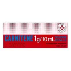 CARNITENE*orale soluz 10 flaconcini 1 g